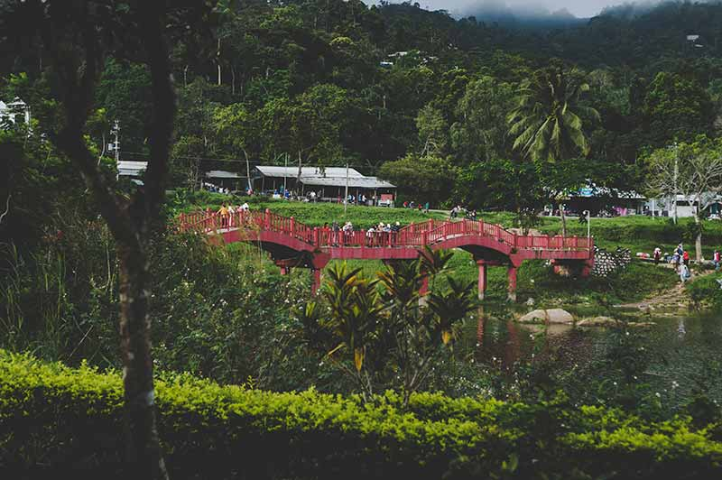Image of The Kampong National Tropical Botanical Garden