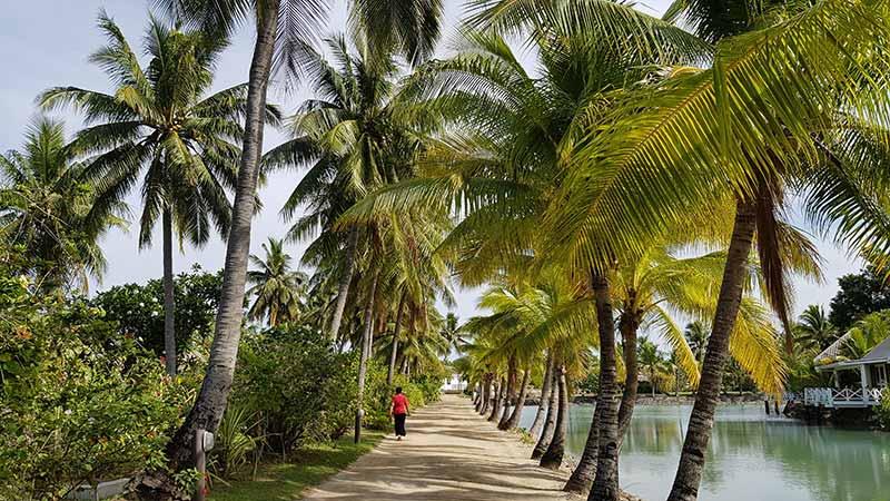 image of Viti Levu in Fiji