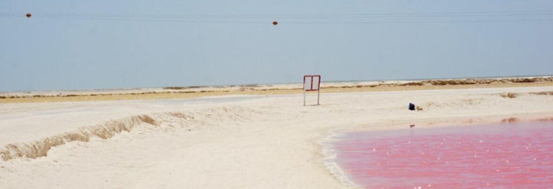 pink beach in Bahamas